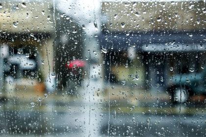Rainbellevue