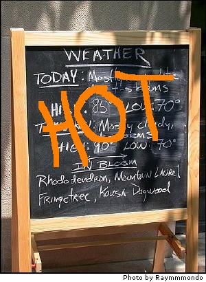 Weather_hot